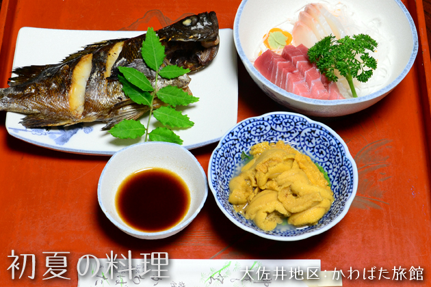 GHP_Kawabata.jpg